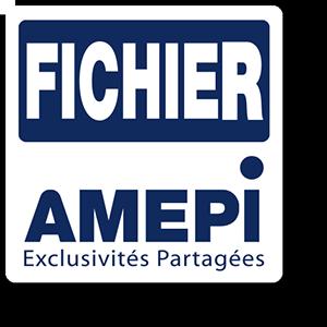 Logo fichier amepi